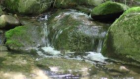 Woda Rzeczna Ciec Nad mech Zakrywającą skałą zdjęcie wideo