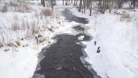 Woda rzeczna przepływ wśród śniegu i lodu zdjęcie wideo