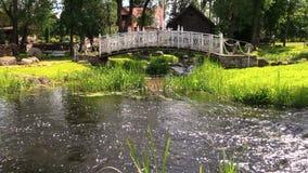 Woda rzeczna strumienia przepływ pod białym dekoracyjnym mostem w parku zbiory wideo