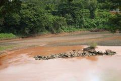 Woda rzeczny susza problem Zdjęcia Stock