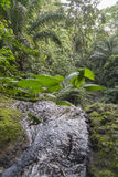 Woda spada na tropikalnej wyspie sao wolumin Obraz Royalty Free