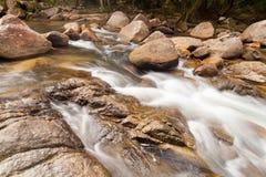 Woda spadków kaskada na Tropikalnym lesie Zdjęcie Stock