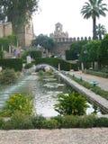 Woda uprawia ogródek w Starym Spanish Town zdjęcie royalty free