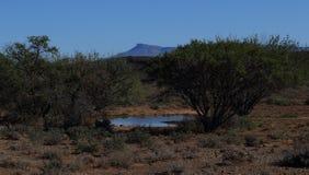Woda w Karoo Południowa Afryka Fotografia Stock