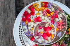 Woda w pucharze mieszającym z pachnidłem i kwiatami Zdjęcie Stock