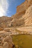 Woda w pustyni Zdjęcie Royalty Free