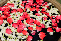 Woda z kwiatami dla Tajlandzkiego festiwalu Songkran Zdjęcie Royalty Free
