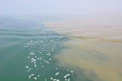 woda zanieczyszczona Fotografia Royalty Free