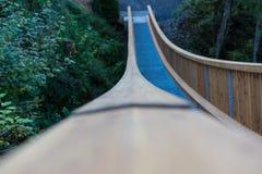 Wodden铁锁式桥梁在森林区域 库存图片