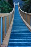 Wodden chain bro i skogområde royaltyfri fotografi