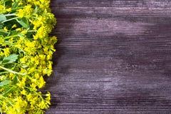 Wodden-Hintergrund mit Rahmen für von gelbe frische Wildflowers stockfotos