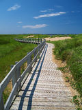 Wodden Path 2. Woodent path along the back side of beach dunes Royalty Free Stock Image