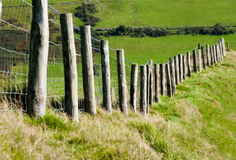 Wodden Posts with Metal Wire Fence in Cattle Field Stock Photography