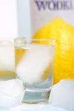 Wodka lizenzfreie stockfotografie