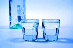 Wodka en glazen Stock Foto
