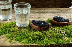 Wodka en zwarte kaviaar Russisch voedsel Stock Afbeeldingen