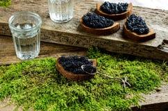 Wodka en zwarte kaviaar Russisch voedsel Royalty-vrije Stock Afbeelding