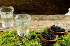 Wodka en zwarte kaviaar Russisch voedsel Royalty-vrije Stock Foto's