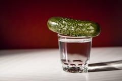 Wodka und Gurke Lizenzfreies Stockfoto