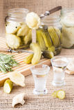 Wodka und traditionelle russische Geleitboote lizenzfreie stockfotografie
