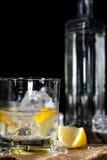 Wodkaschot Royalty-vrije Stock Afbeeldingen