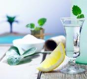 Wodkaschußglas mit Zitronegeleitboot Lizenzfreies Stockbild
