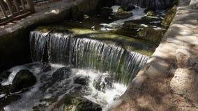 Wodna cecha w parku zdjęcie wideo