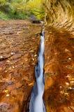 Wodna erozja, opuszczać rozwidlenie Północna Zatoczki Rzeka Fotografia Royalty Free