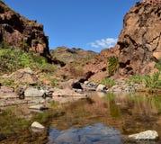 Wodna kałuża, Tirajana wąwóz, Gran Canaria fotografia stock
