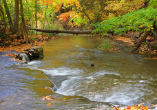Wodna kaskada w głębokim lesie Obrazy Royalty Free