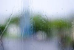 Wodna kropla, deszcz kropla na szkle i obcieknięcie puszek z zieleni bac, Obrazy Stock