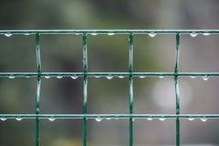 Wodna kropla na żelaza ogrodzeniu przeciw rozmytemu tłu Obraz Stock