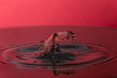 Wodna kropla na czerwonym tle obraz stock
