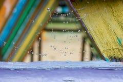 Wodna kropla na sieci. Obraz Royalty Free