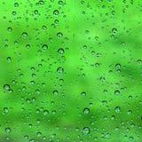 Wodna kropla na zieleni obrazy stock