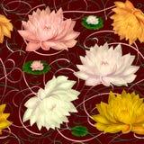 Wodna leluja na zmroku - czerwony tło Zdjęcie Stock