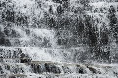 Wodna tekstura lasowe siklaw kaskady obraz royalty free