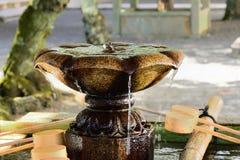 Wodna wiosna przy świątynnym ` s ogródem, Kyoto Japonia zdjęcia royalty free