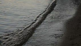 Wodne fala na wieczór plaży zbiory