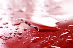Wodne kropelki mokre na czerwonej samochodowej ` s powierzchni okapturzają, nawadniają, kroplę na czerwonej teksturze, wody kropl fotografia royalty free