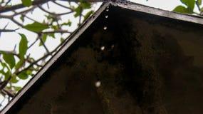 wodne kropelki od dachu zaniechany dom fotografia stock