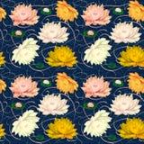 Wodne leluje na Błękitnym tle Zdjęcie Royalty Free