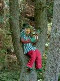 Wodnego sprite obsiadanie na drzewie Zdjęcie Stock