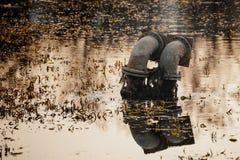 Wodnej drymby klejenie z wody obrazy royalty free