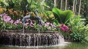 Wodnej fontanny cecha zbiory wideo