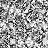 Wodnej lelui lotosowego kwiatu tło Obrazy Stock