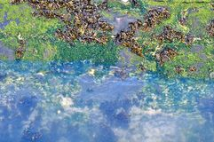 Wodny chełbotanie w molo Fotografia Royalty Free