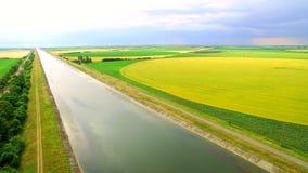 Wodny kanał między polami zielona i żółta banatka dla inkorporaci zdjęcie wideo