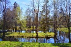 Wodny labitynt w Gatchina petersburg Rosji st Zdjęcie Stock