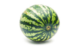 Wodny melon Obraz Stock